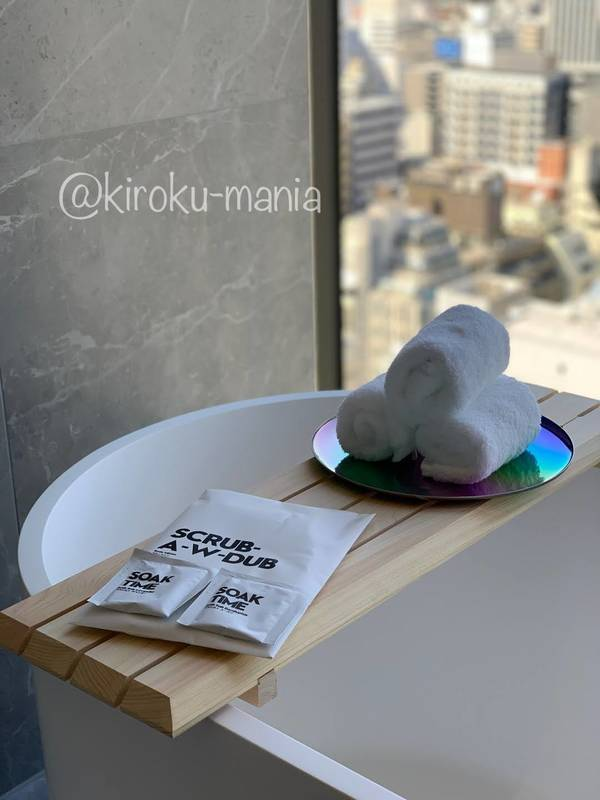 f:id:kiroku-mania:20210617231417j:plain