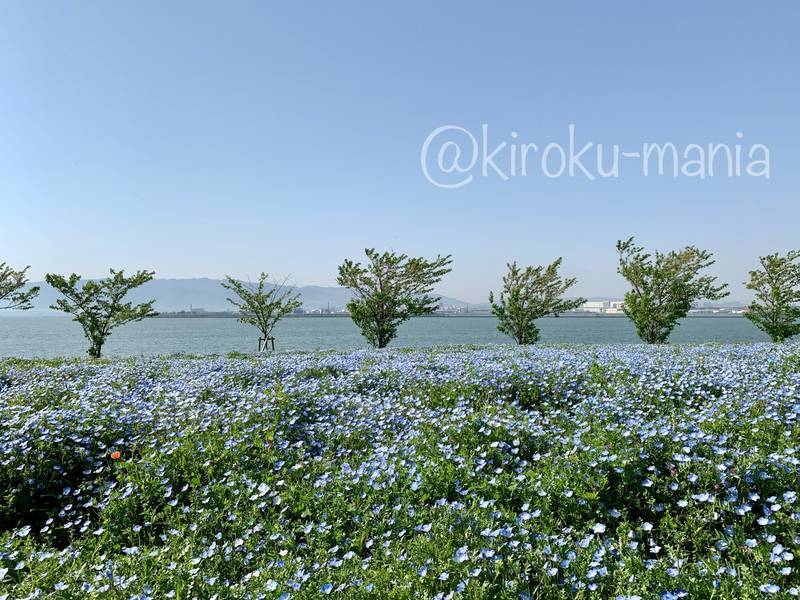 f:id:kiroku-mania:20210714151552j:plain