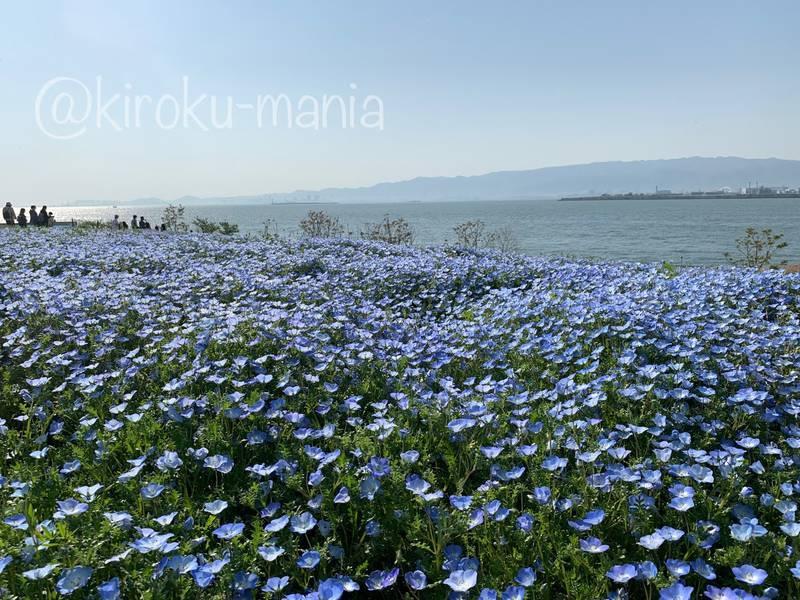 f:id:kiroku-mania:20210714151605j:plain