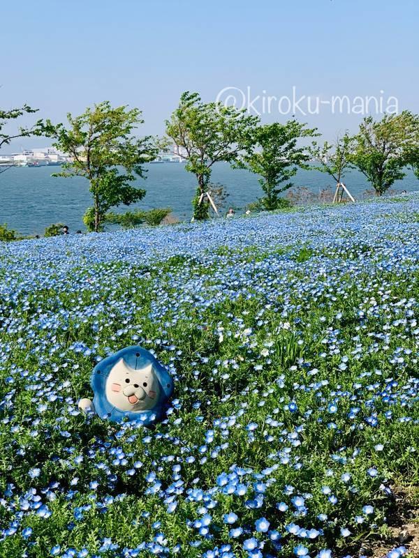 f:id:kiroku-mania:20210714151658j:plain