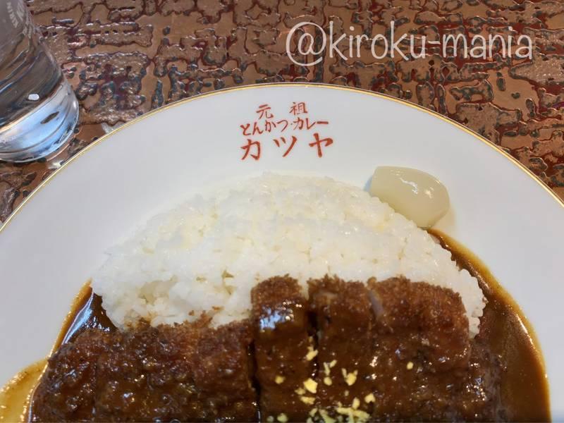 f:id:kiroku-mania:20210717102449j:plain