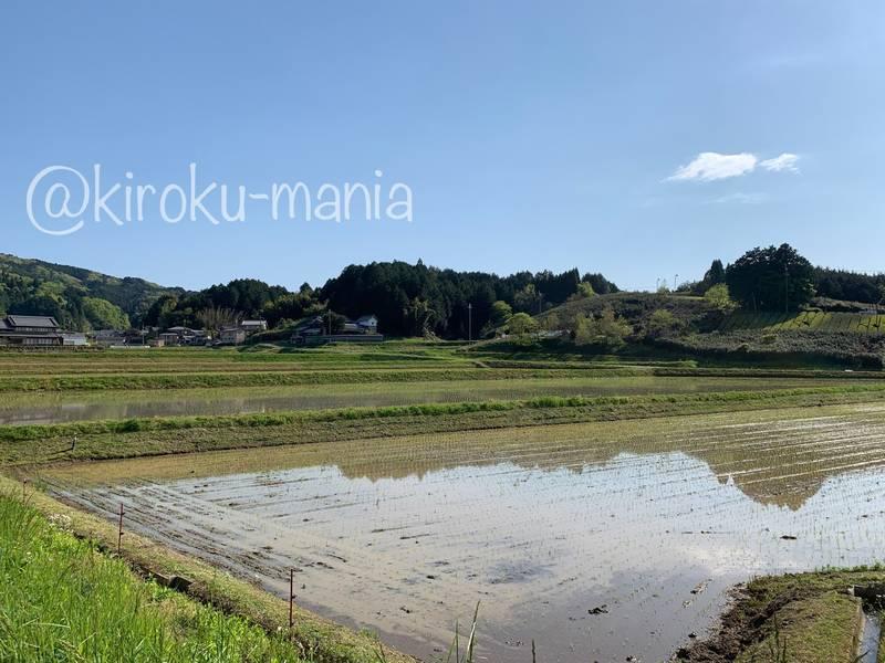f:id:kiroku-mania:20210802234132j:plain
