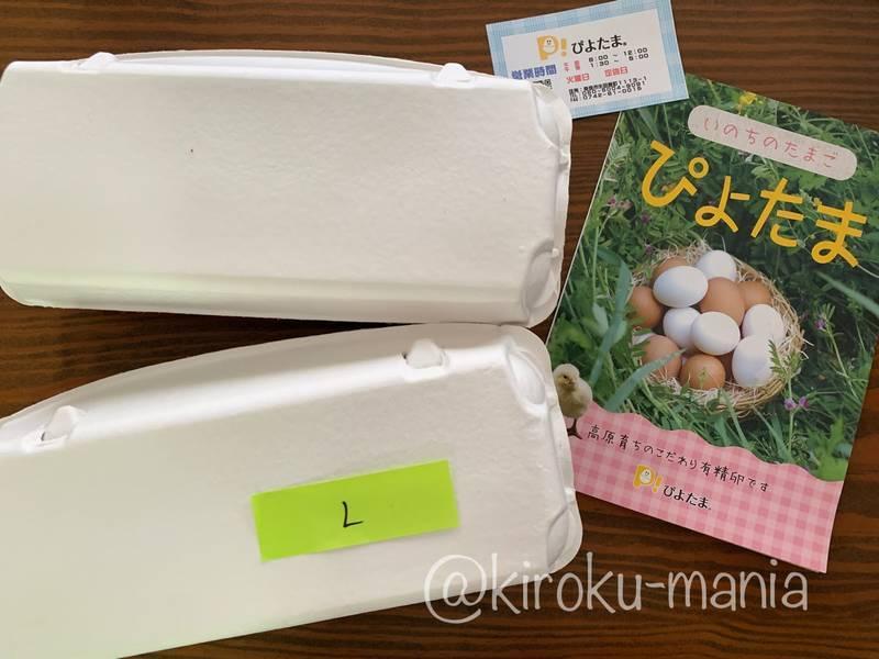 f:id:kiroku-mania:20210802234217j:plain
