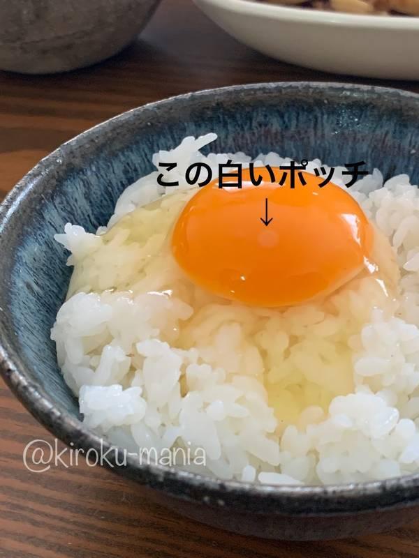 f:id:kiroku-mania:20210802234231j:plain