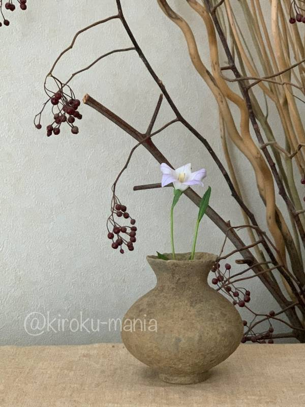 f:id:kiroku-mania:20211006161307j:plain