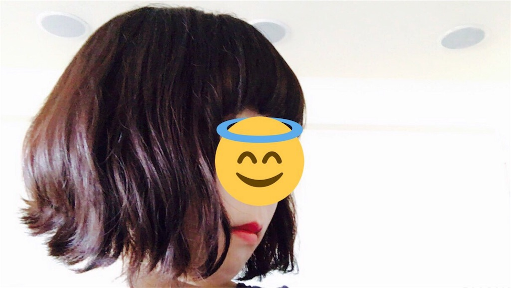 f:id:kiryuanzu:20170303202348j:image