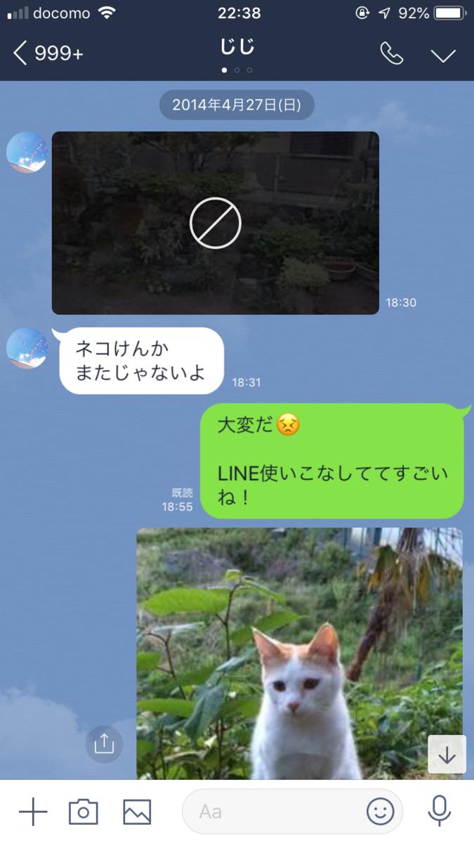 f:id:kiryuanzu:20190407231719j:plain