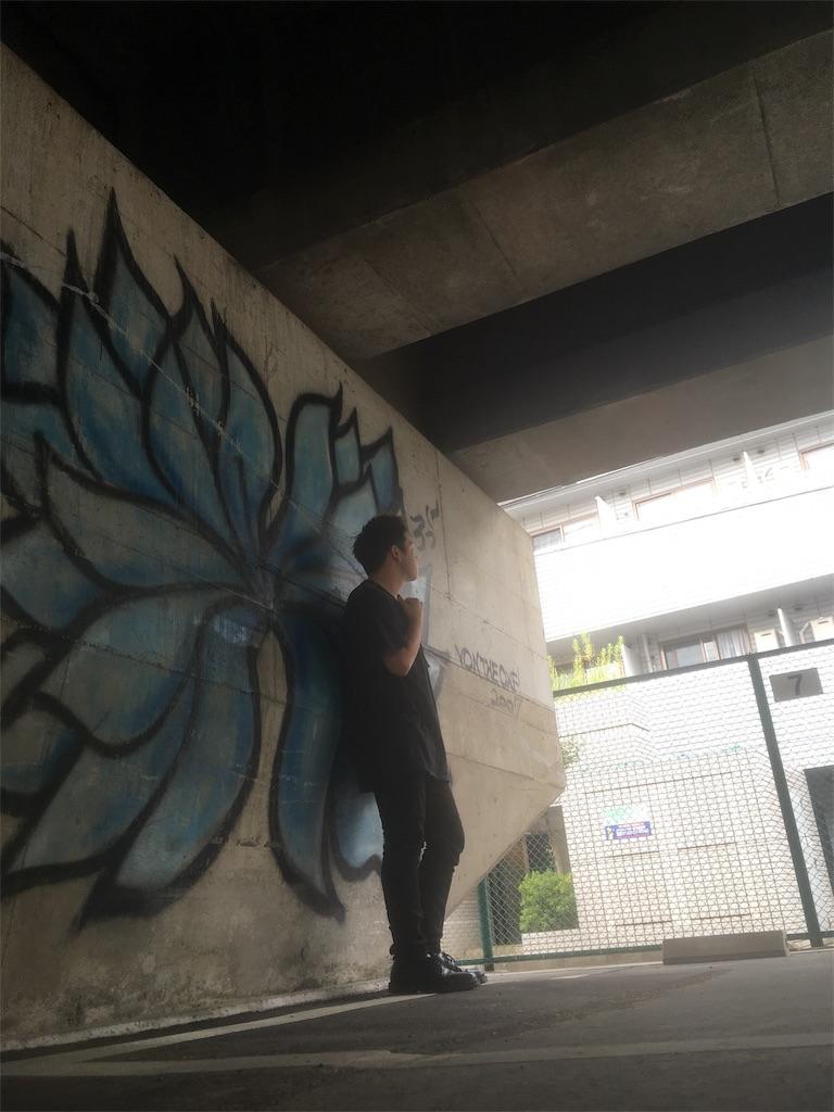 f:id:kisalagi_jp:20180829210831j:image