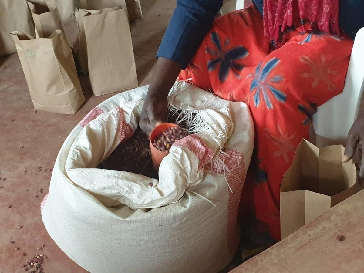f:id:kisekirwanda:20200402163648j:plain
