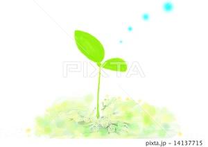 f:id:kisetu4season:20170325084957j:plain