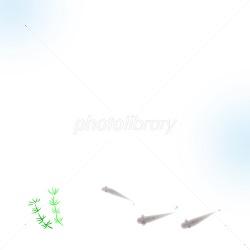 f:id:kisetu4season:20170715072449j:plain