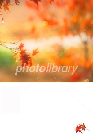 f:id:kisetu4season:20170822213022j:plain