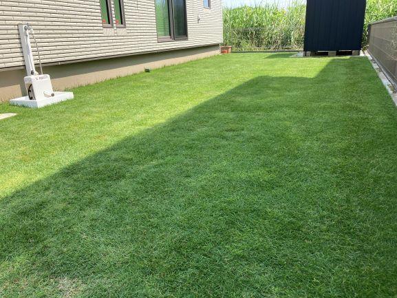 芝刈り完了掃除済み