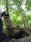俺と帽子被った木人