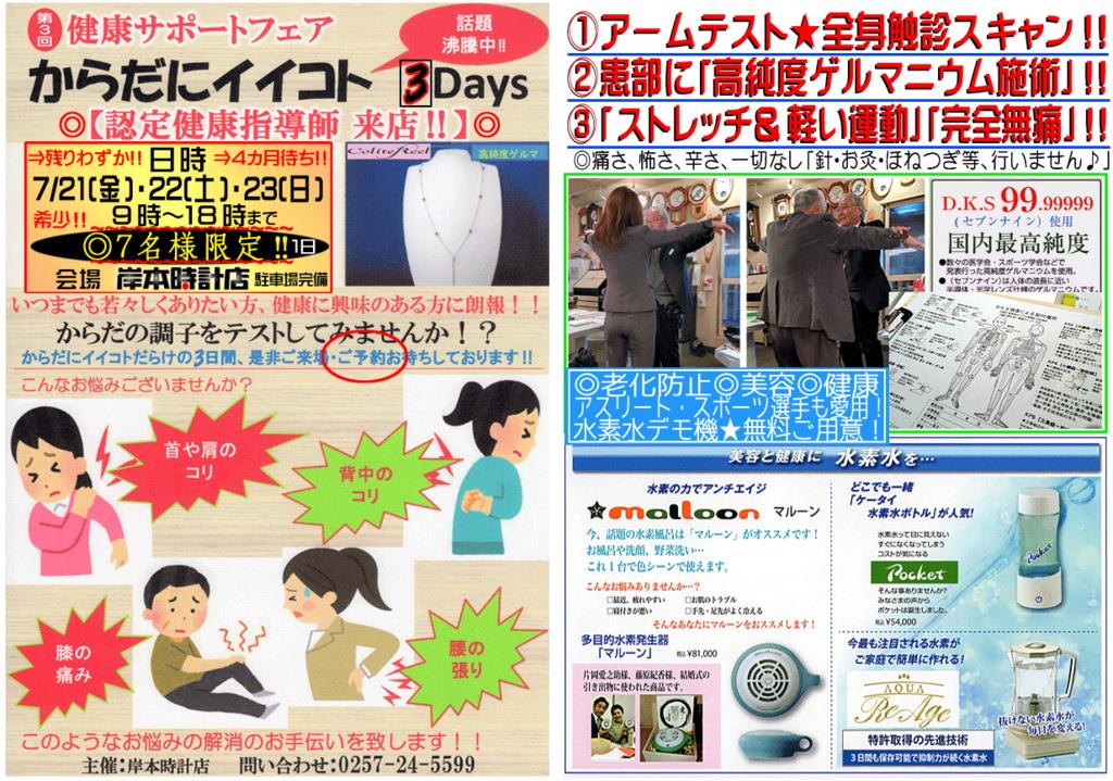 f:id:kishimotoweb:20170706164256j:plain
