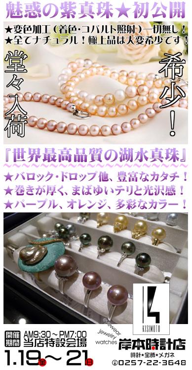 f:id:kishimotoweb:20180108105802j:plain