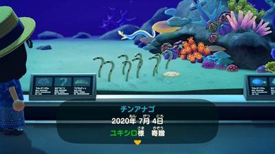 f:id:kishiro100master:20200808205534j:plain