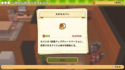 f:id:kishiro100master:20210306223327j:plain