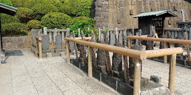 f:id:kishuji-kaisoku:20190727210045j:image