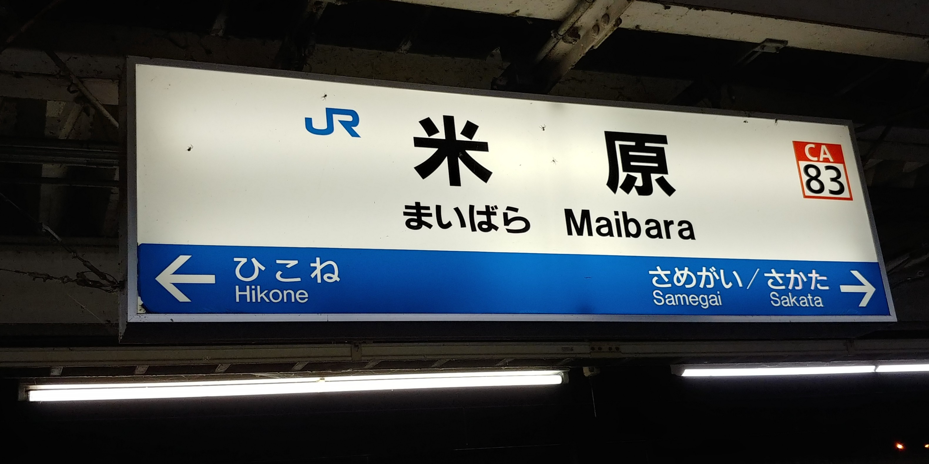 f:id:kishuji-kaisoku:20191218114528j:image