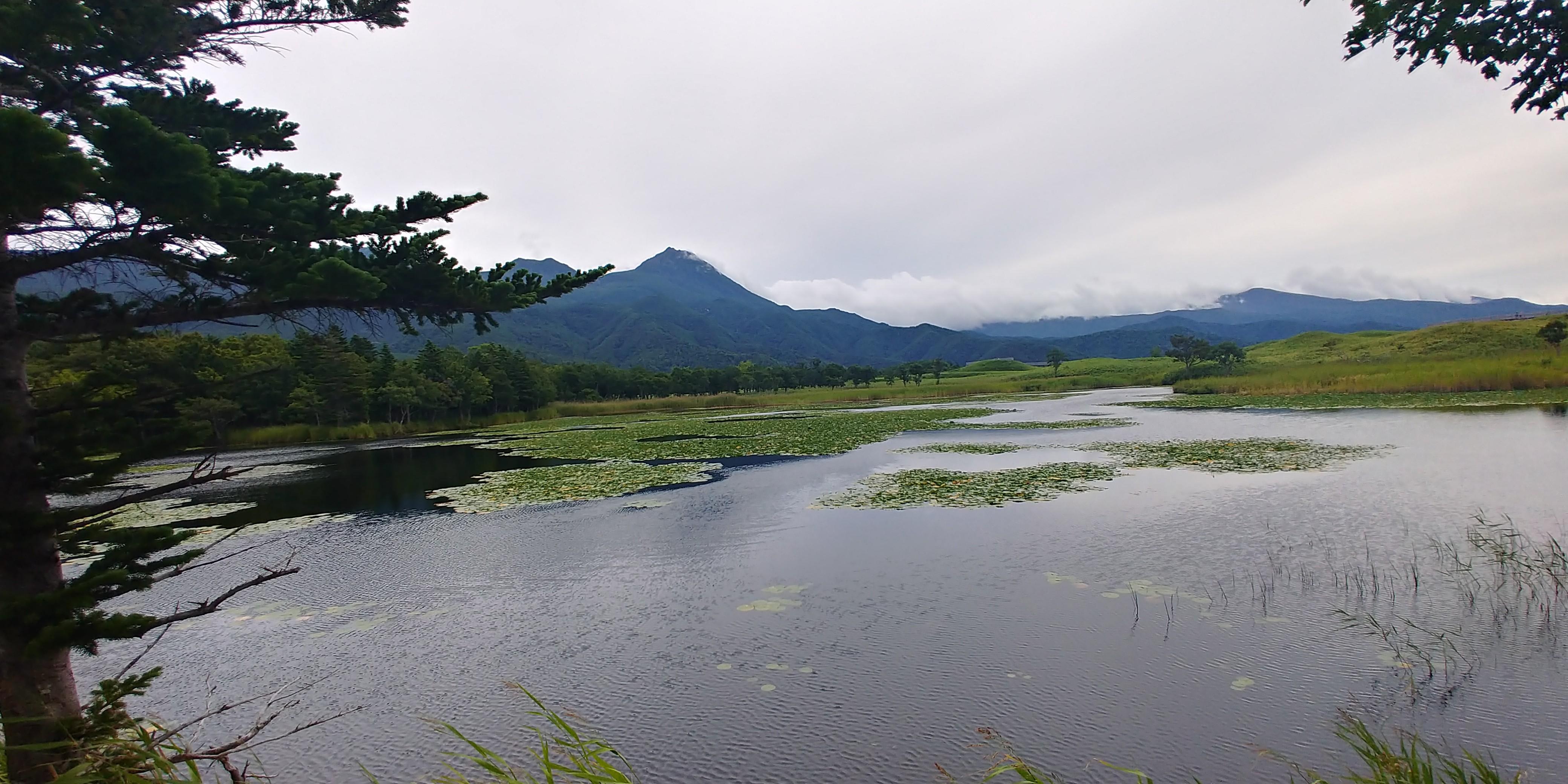 f:id:kishuji-kaisoku:20191228202227j:image