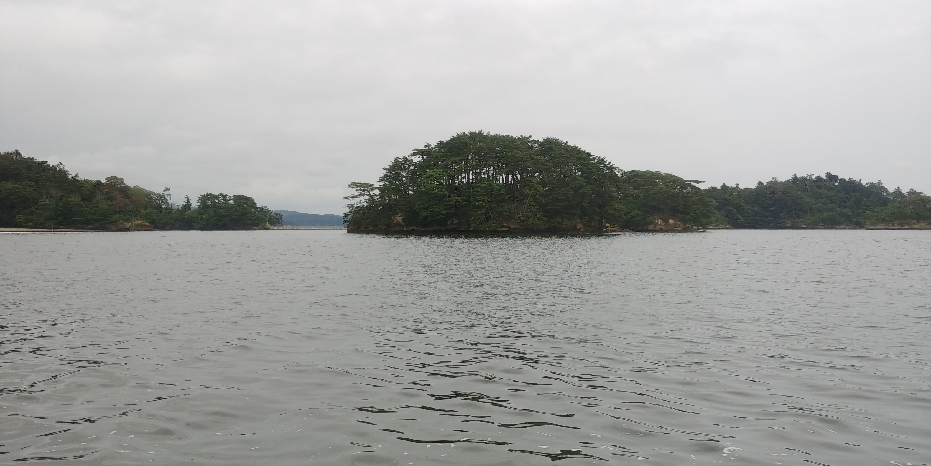 f:id:kishuji-kaisoku:20191230170003j:image