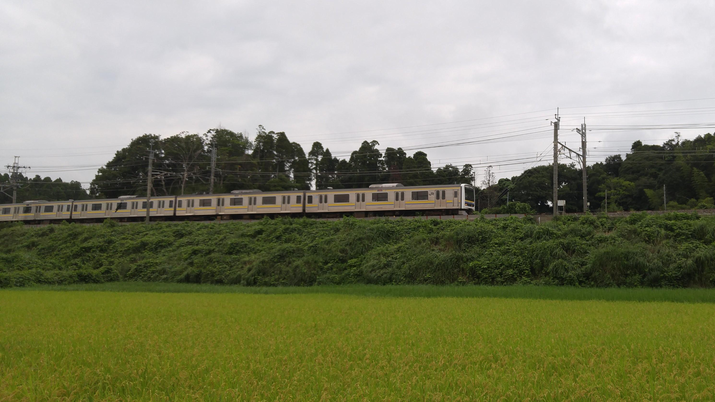 f:id:kishuji-kaisoku:20200103002411j:image