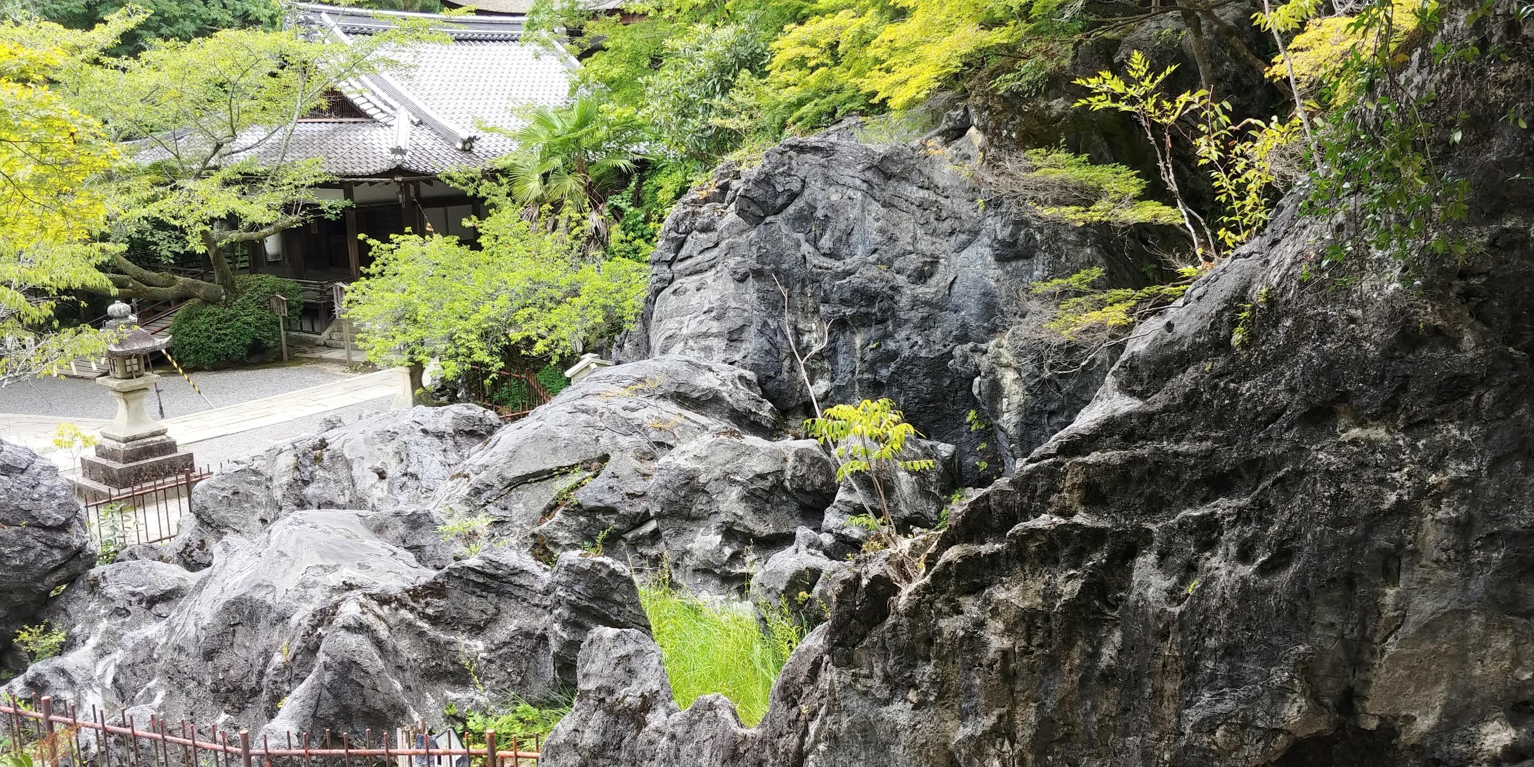 f:id:kishuji-kaisoku:20200121234810j:image