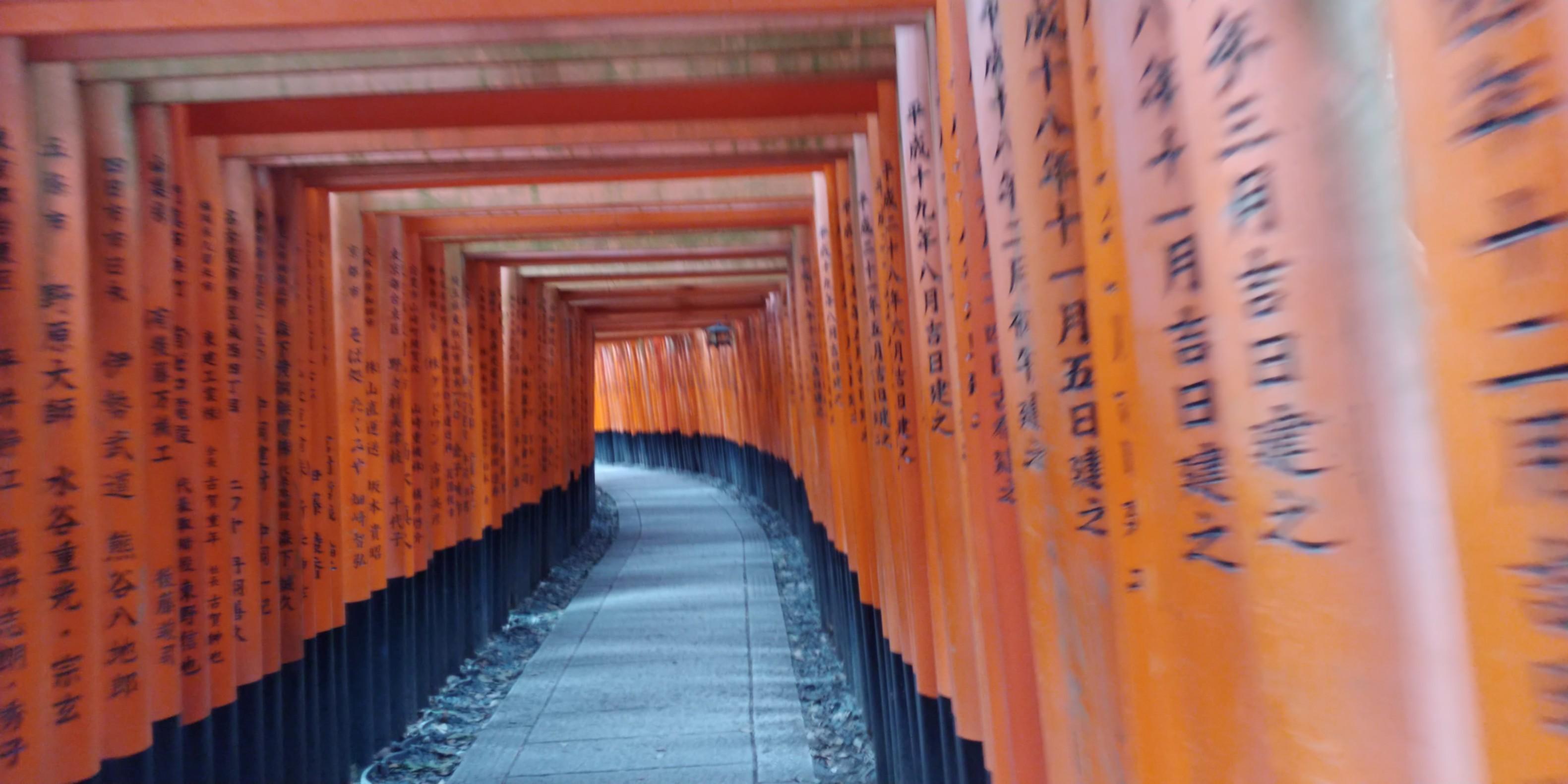 f:id:kishuji-kaisoku:20200122002426j:image