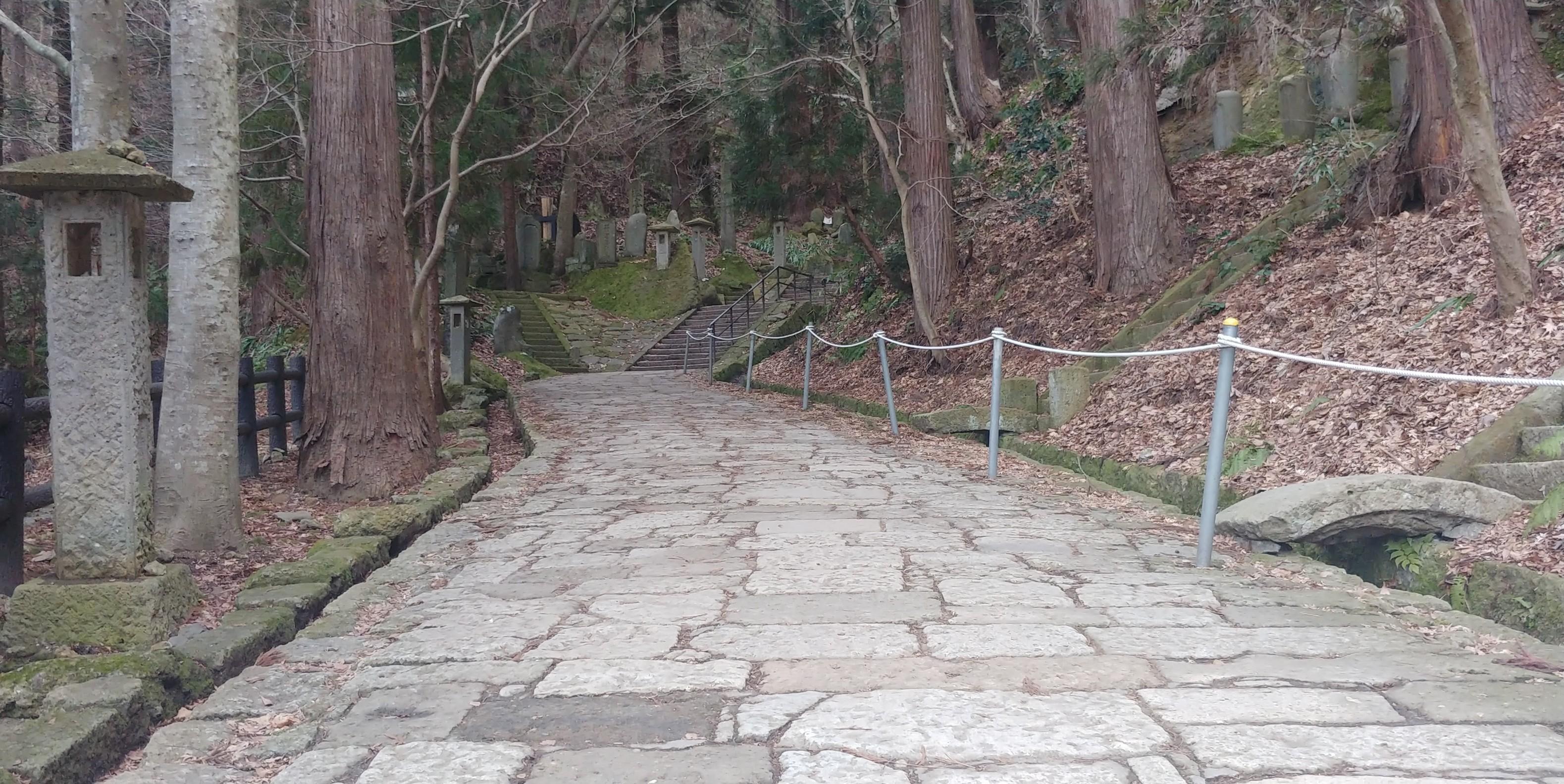 f:id:kishuji-kaisoku:20200127111722j:image