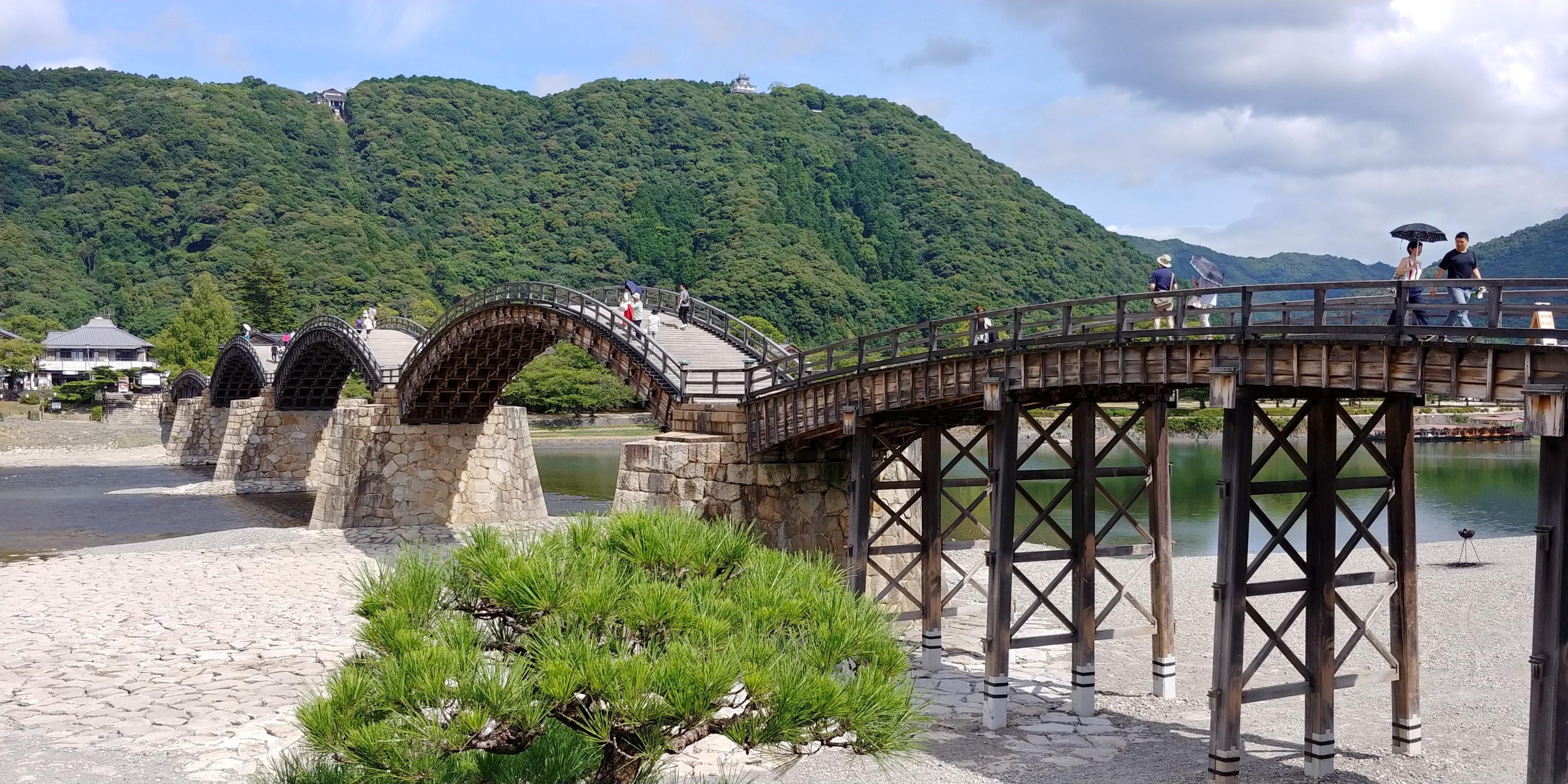 f:id:kishuji-kaisoku:20200208120457j:image