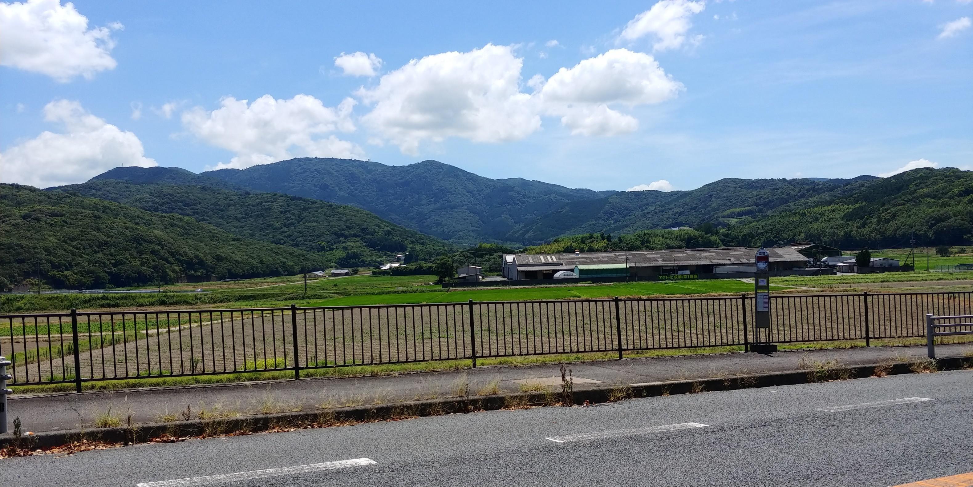 f:id:kishuji-kaisoku:20200211130747j:image