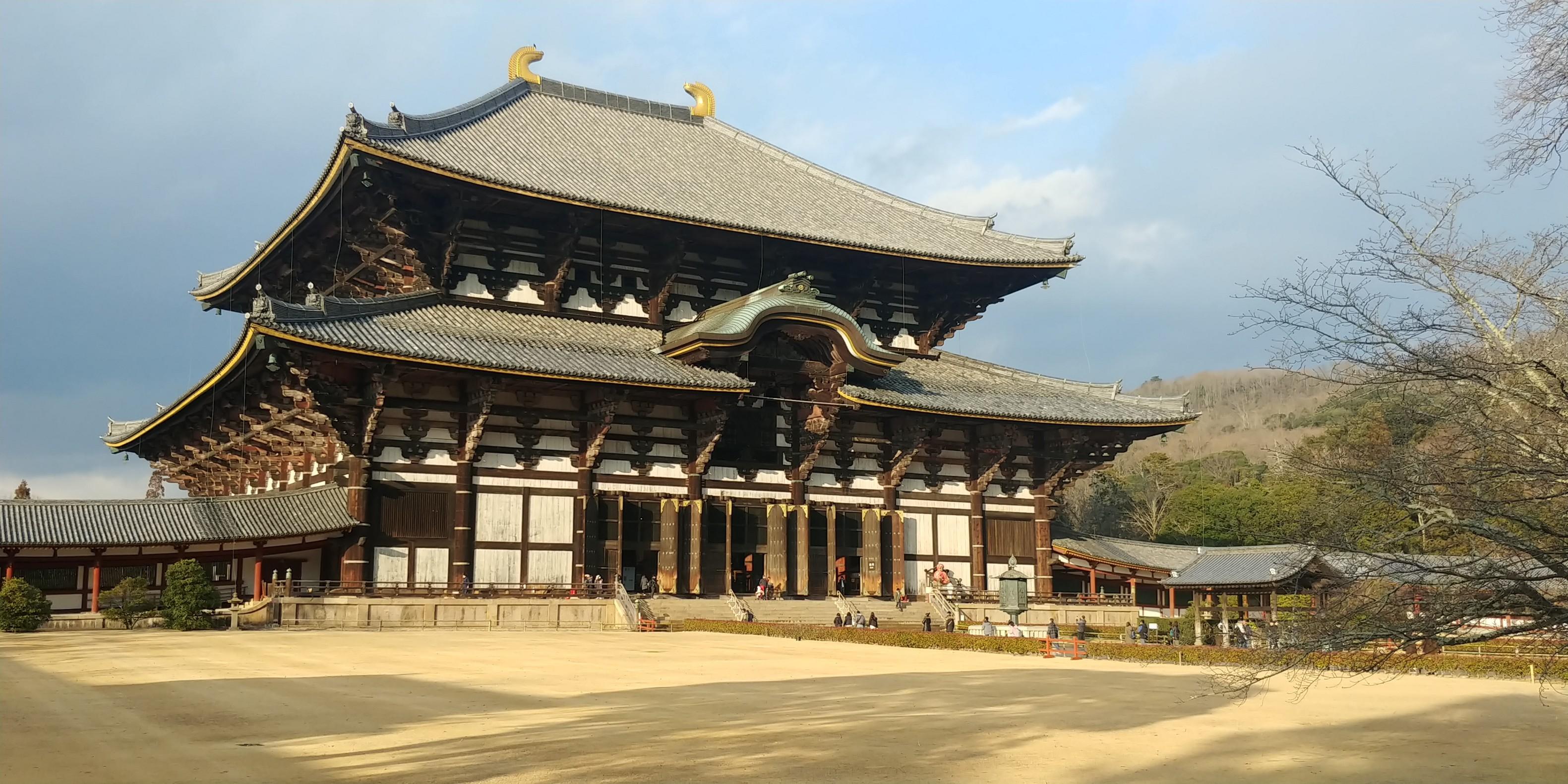 f:id:kishuji-kaisoku:20200211230151j:image