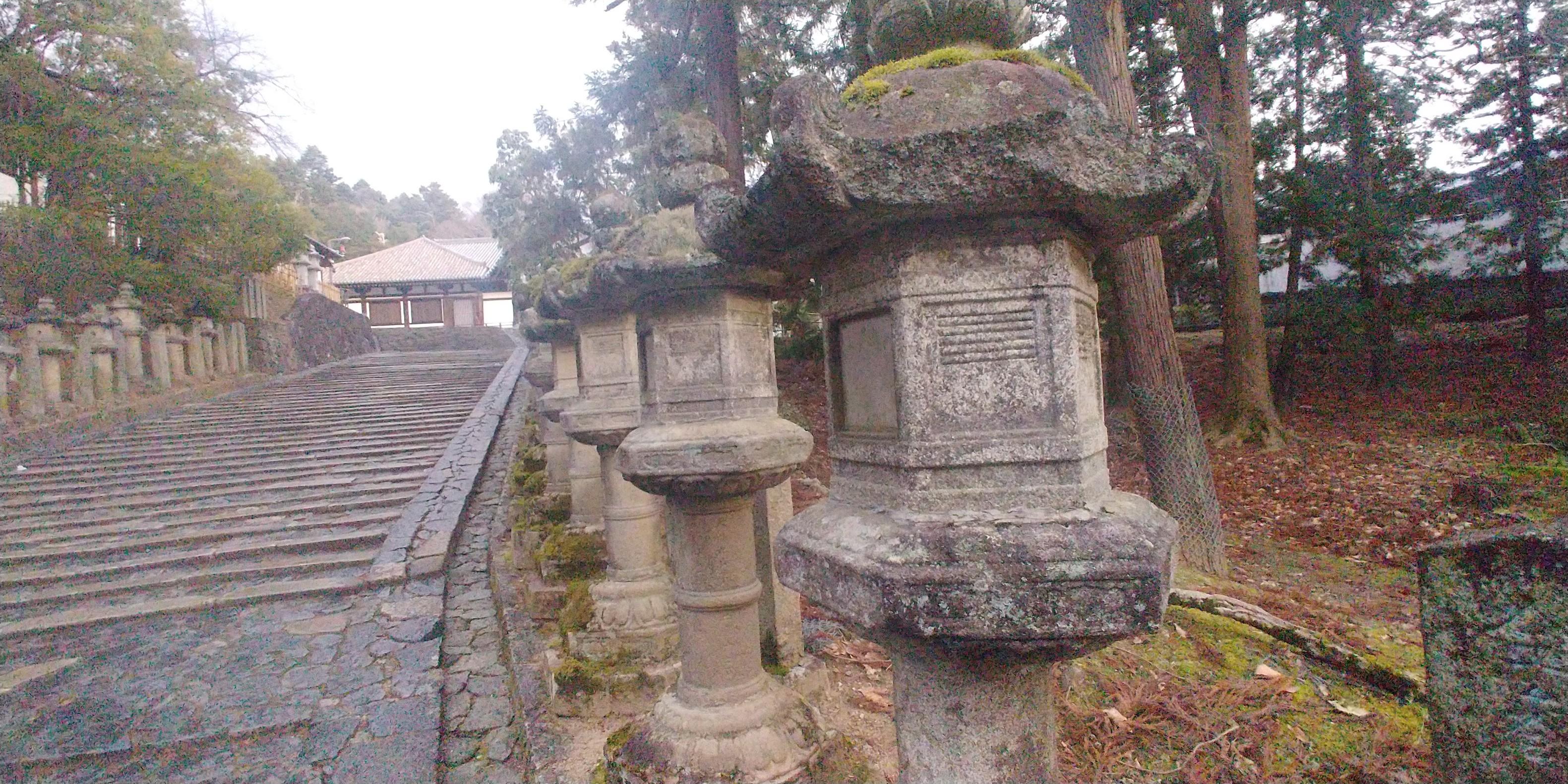 f:id:kishuji-kaisoku:20200211230233j:image