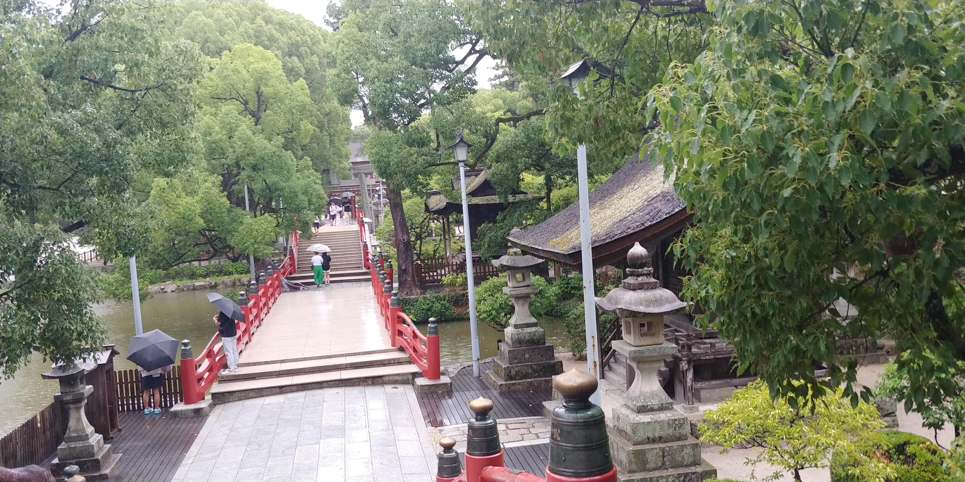 f:id:kishuji-kaisoku:20200216102058j:image