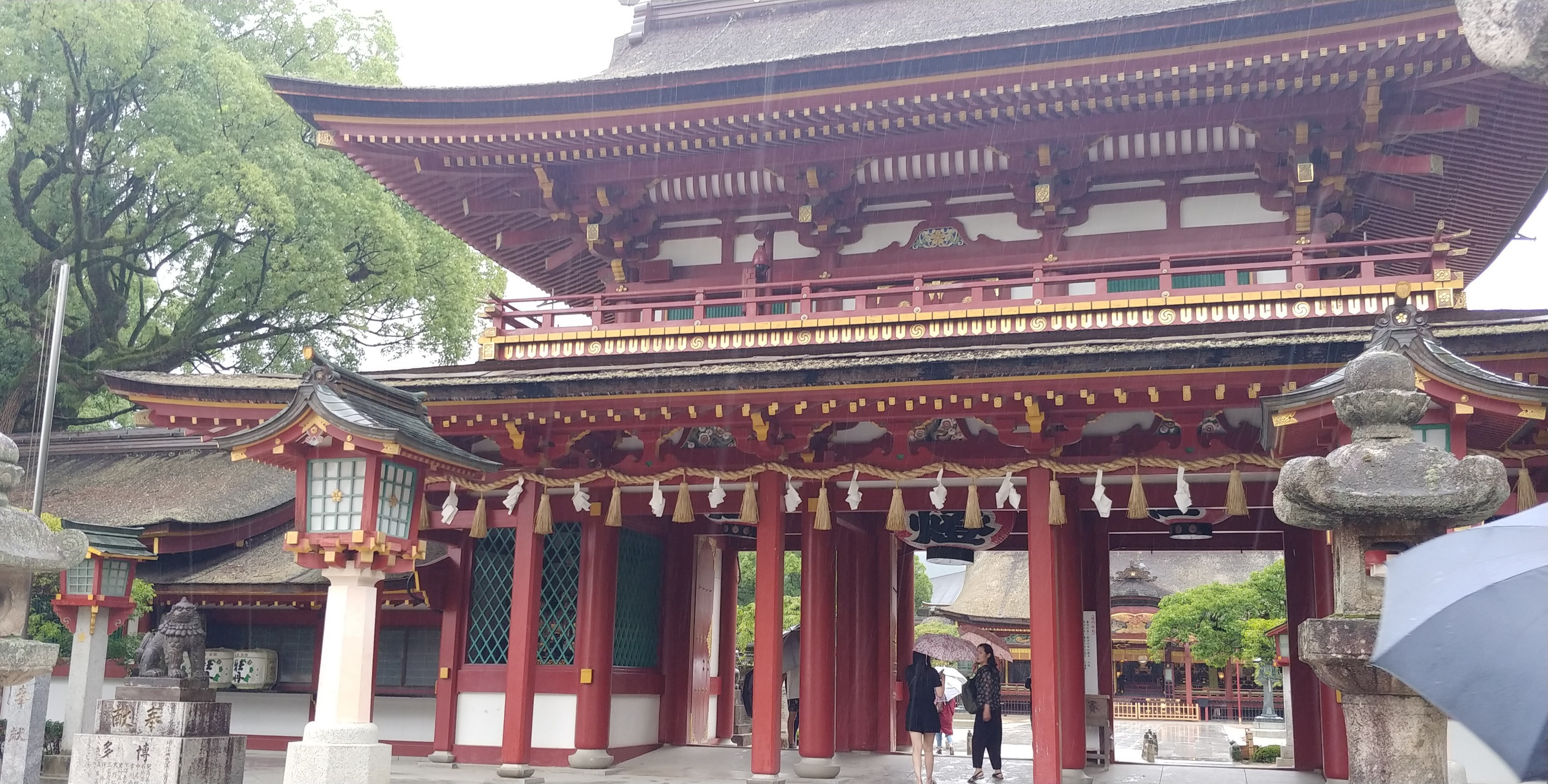 f:id:kishuji-kaisoku:20200216102143j:image