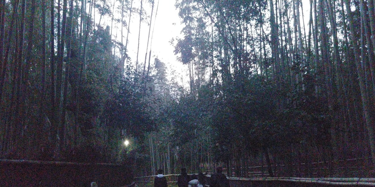f:id:kishuji-kaisoku:20200501025354j:plain