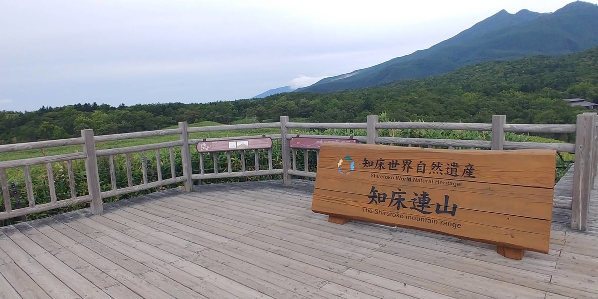 f:id:kishuji-kaisoku:20200520003243j:plain