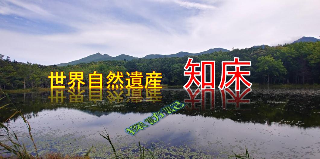 f:id:kishuji-kaisoku:20200520141039p:plain