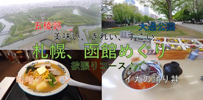 f:id:kishuji-kaisoku:20200526005035p:plain