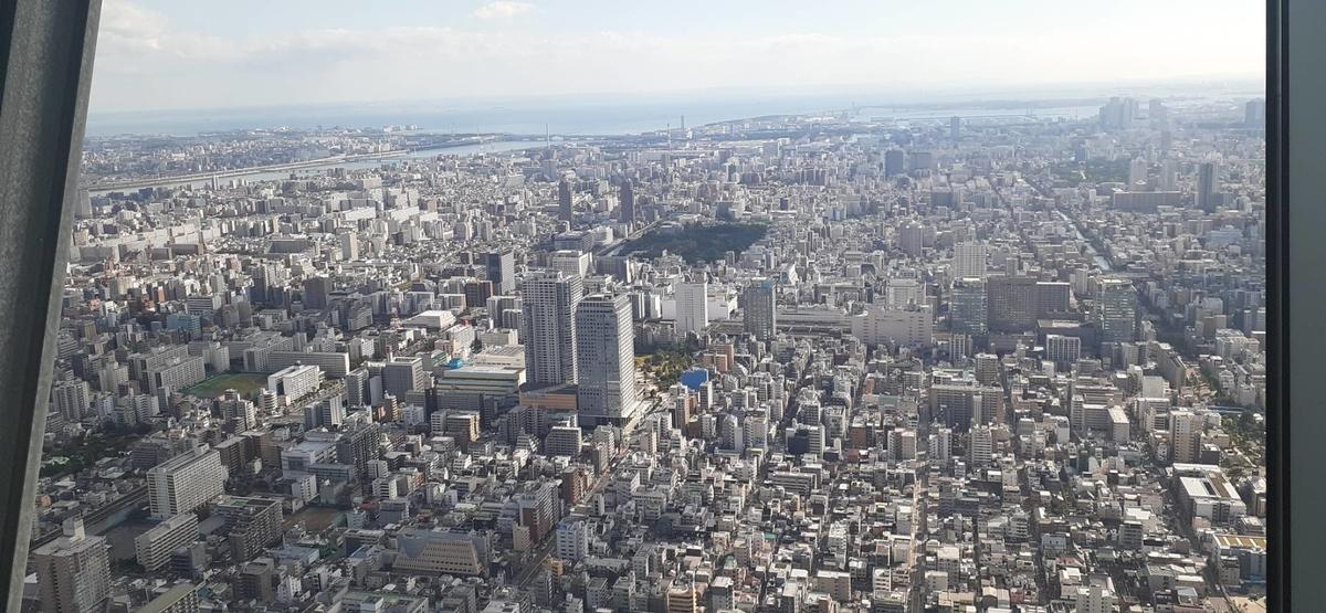 f:id:kishuji-kaisoku:20201109005903j:plain
