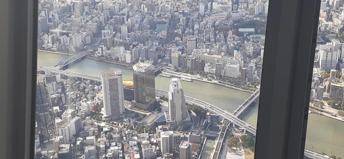 f:id:kishuji-kaisoku:20201109010459j:plain