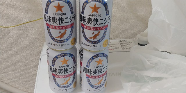 f:id:kishuji-kaisoku:20210408022043j:image