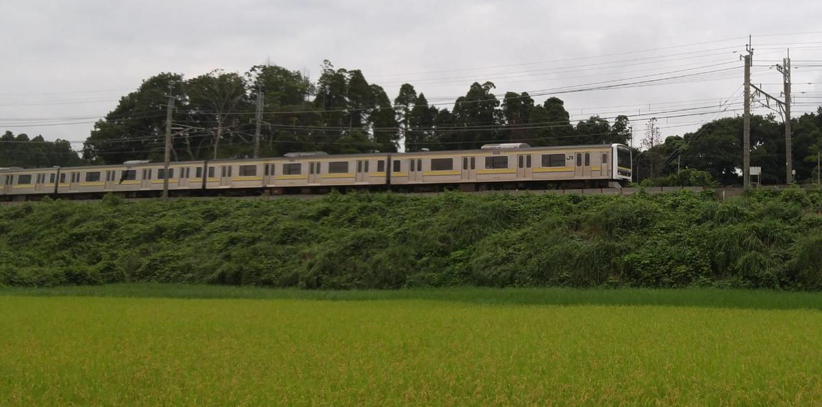 f:id:kishuji-kaisoku:20210503180122j:plain