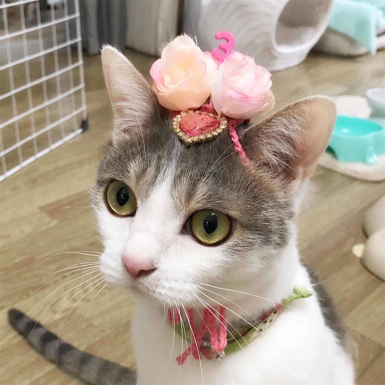 3歳のお花帽子
