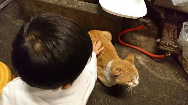 f:id:kisuke987:20161017201527j:image