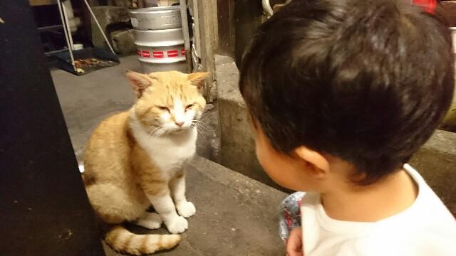 f:id:kisuke987:20161017201751j:image