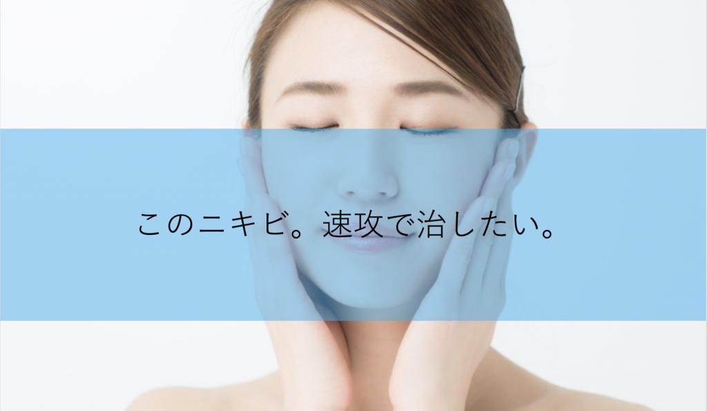 f:id:kisuke_blog:20181115214308p:plain