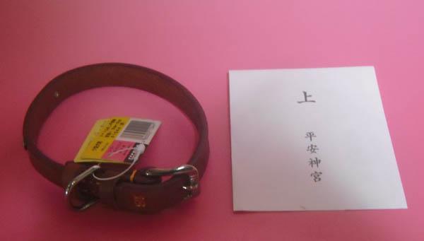 f:id:kisyu-inu:20170313160343j:plain