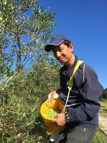 f:id:kitaawaji-olive:20161011074752j:plain